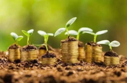 融资担保的定义及内涵及特征
